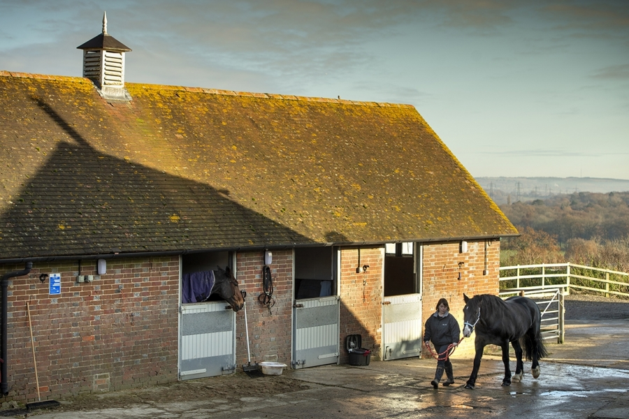 Our livery stables at Hill Ash Farm Estate