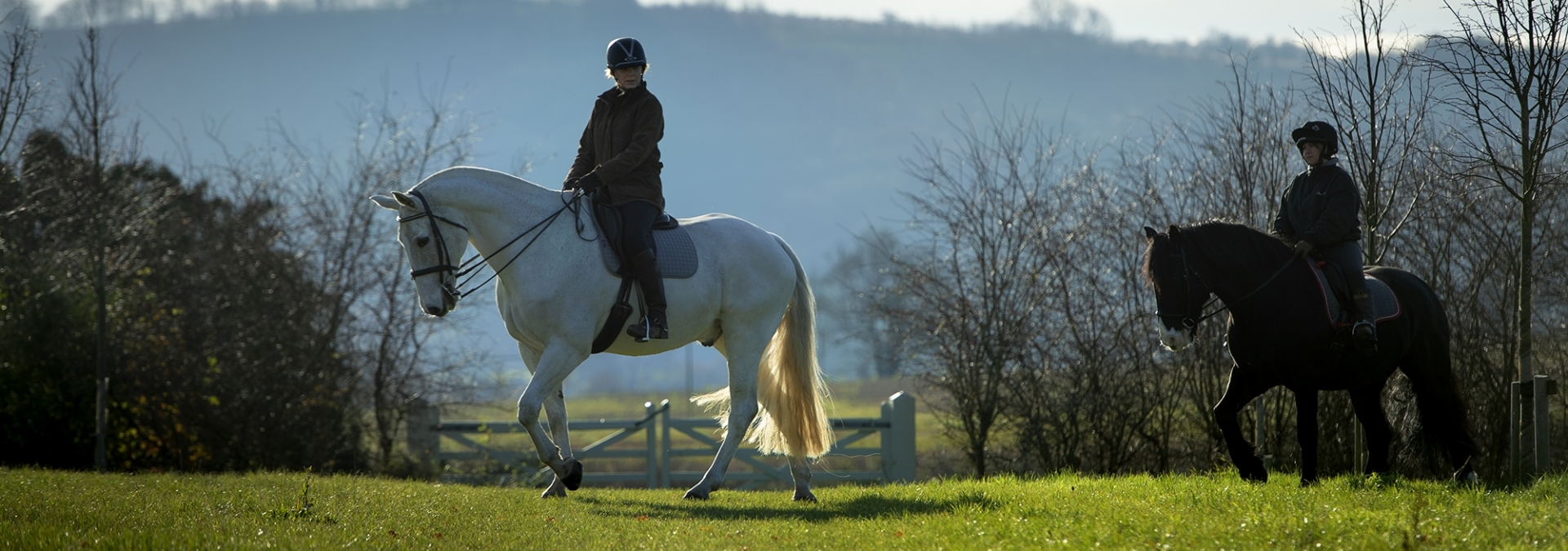 Bridleways and tracks to explore the South Downs